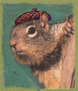 acornberet