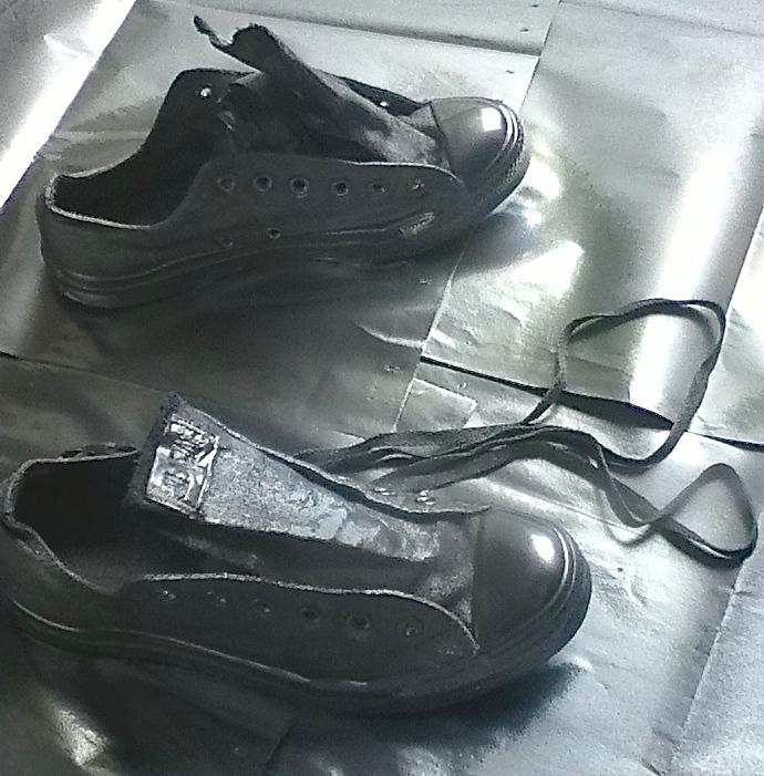 silver shoes   Lynne Rae Perkins