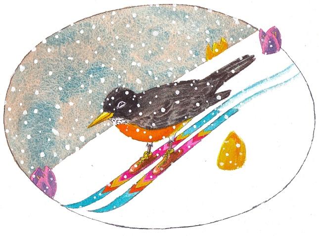 robin skiing